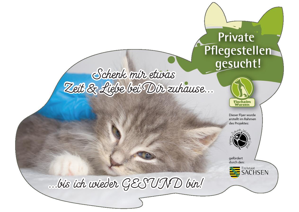 Flyer in Form einer Katze über die Suche nach Pflegestellen für Katzen.