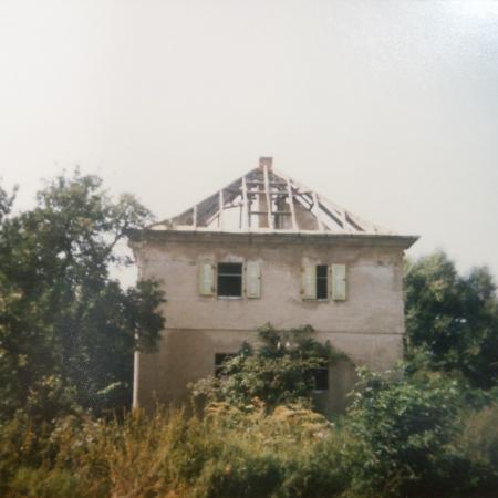 Tierheim_2